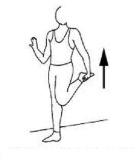 etirement du quadriceps-osteo